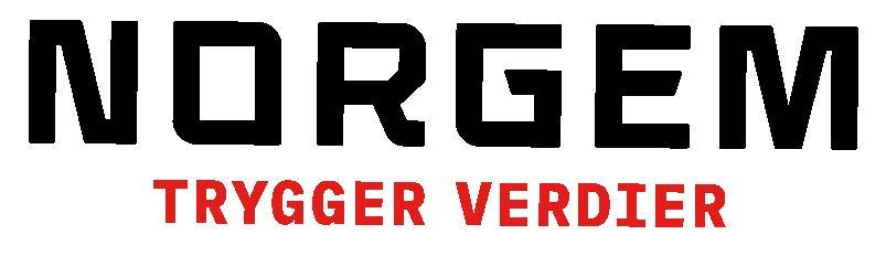 Logo Norgem AS